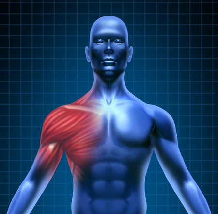 Muscle pain represented by a blue human concept with the red shoulder anatomy highlighted showing the medical structure under the skin. Stock Photo - 10503759