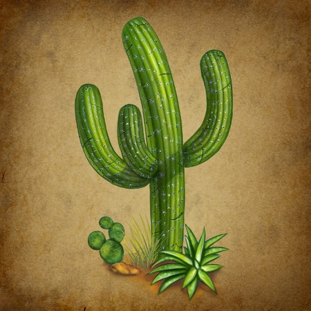 desert cactus: Cactus with old vintage grunge background representing the concept of hot and spicy mexican theme.