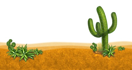 Dessert scene with cactus and arid climate plants on a sand filled horizontal perspective. photo