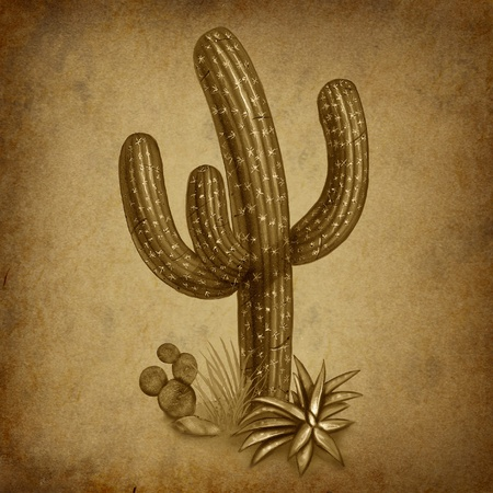 arid: Cactus desert symbol representing a dry arid climate in a grunge vintage texture background. Stock Photo