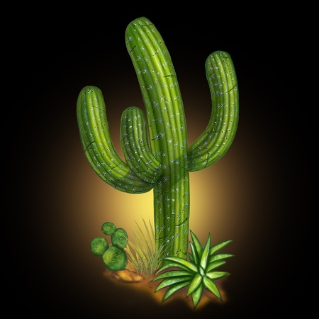 arid: Cactus desert plant on black background representing a hot arid weather tropical climate usually found in Mexico or Arizona. Stock Photo