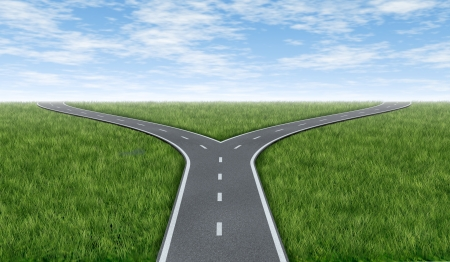 fork in the road: Cross roads horizon with grass and blue sky showing a  fork in the road or highway business metaphor representing the concept of a strategic dilemma choosing the right direction to go when facing two equal or similar options.