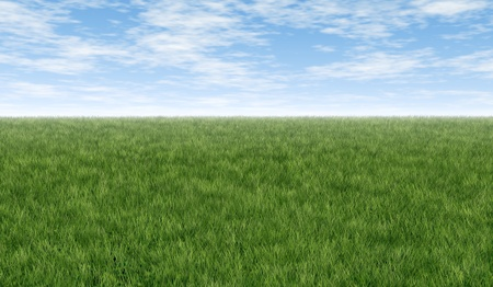 Green grass feild horizon with blue sky and clouds great for double page spreads and background art representing fresh healthy lawn and clean natural nature related issues. Stock Photo