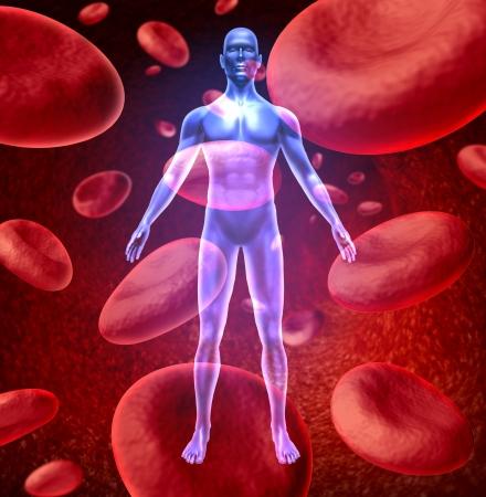vasos sanguineos: Símbolo de circulación de la sangre humana con células rojas de la sangre que fluye a través de las venas y sistema circulatorio humano que representa un símbolo de atención médico.