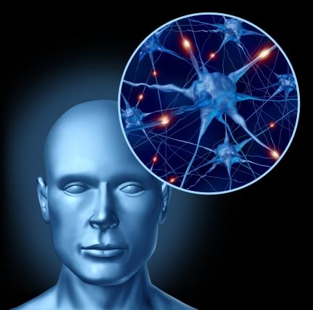 nerveux: L'homme symbole de l'intelligence du cerveau m�dicaux repr�sent�s par un gros plan de neurones actifs et l'activit� des cellules d'organes li�s aux neurotransmetteurs montrant l'intelligence avec une m�moire saine et l'activit� de pens�e cognitive.