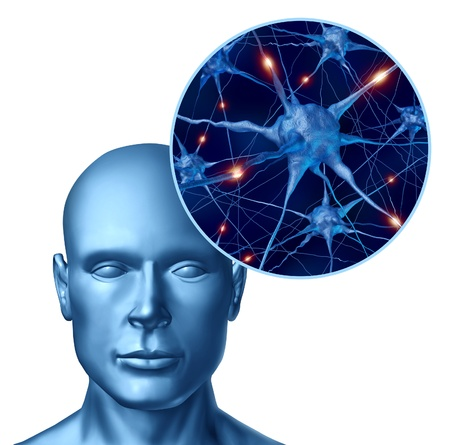 synapse: Human intelligence brain medical symbol represented by a close up of active neurons and organ cell activity related to neurotransmitters showing intelligence with memory and healthy cognitive thinking activity.