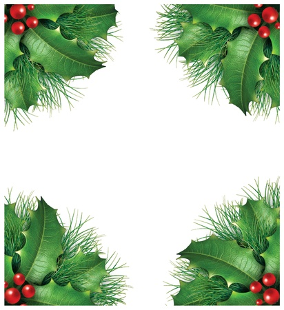 Holly with pine branches and red berries for a seasona christmas holiday decorative evergreen border frame representing festive winter garland ornament on a white background. photo