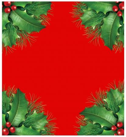 evergreen branch: Holly con ramas de pino y las bayas rojas de un marco seasona vacaciones de Navidad decorativos frontera de hoja perenne que representan ornamento festivo guirnalda invierno sobre un fondo rojo.