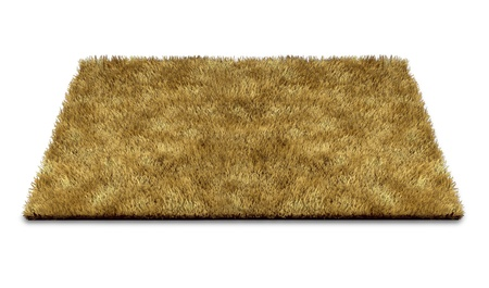 nobody: Welcome doormat carpet isolated on white representing the concept of greeting new ideas and people to a home or at the doorstep of a business.
