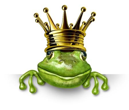 sapo principe: Rana pr�ncipe con corona de oro con un cartel en blanco que representa el concepto de cuento de hadas de cambio y la transformaci�n de un anfibio de la realeza.
