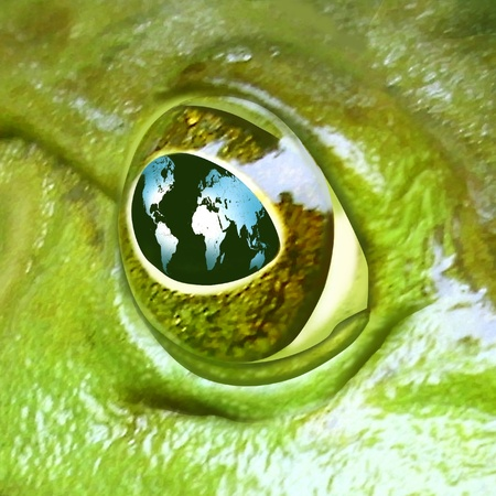catastrophic: frog earth global map environment eye close up conservation save world pollution symbol