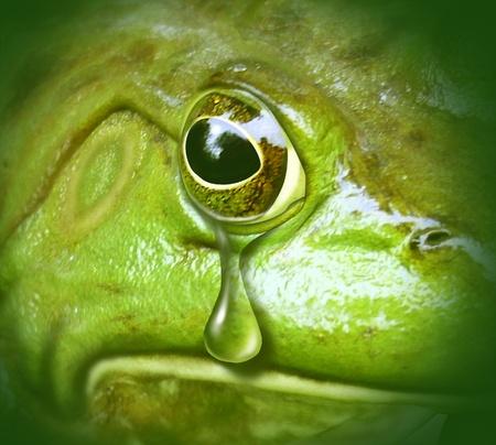 ojos tristes: medio ambiente contaminado rana verde llorando lágrimas de la contaminación símbolo de desastre Foto de archivo