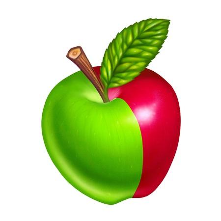 Las manzanas verdes y rojas sobre fondo blanco