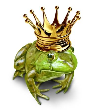 grenouille: Prince transformé en grenouille Sad avec couronne en or pleurer avec une larme dans ses yeux représente le concept de recherche de l'amour résultant de la transformation des amphibiens au prince.