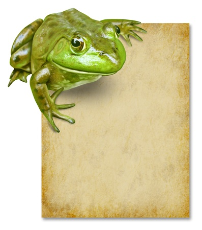 Frog with blank grunge old paper sign representing an advertisement or award certificate presented by a green happy amphibian with white background. photo