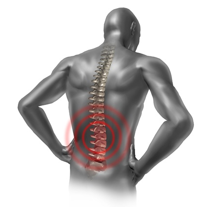 highlighted: Human back pain in red showing the spinal cord skeleton inside the patients anatomical grey body. Stock Photo