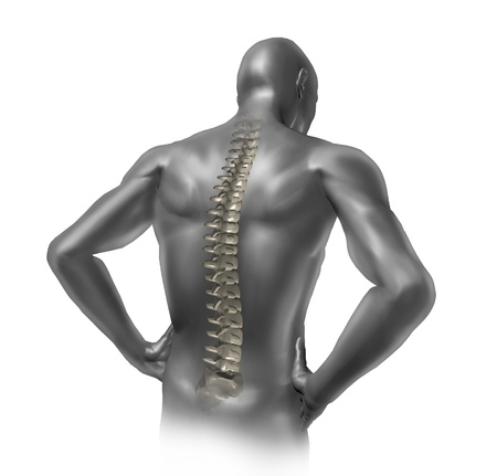 arthritis back: Human back pain showing the spinal cord skeleton inside the patients anatomical body.