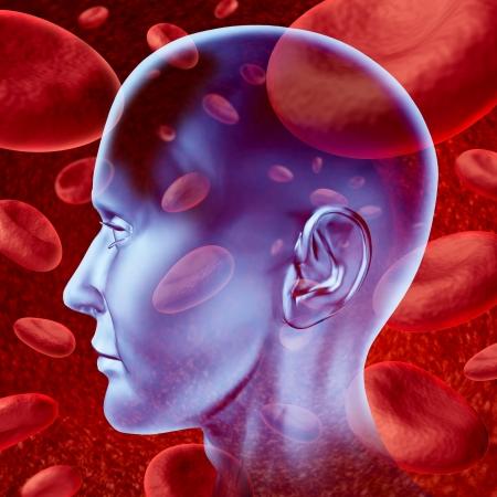 Menselijke hersenen beroerte bloedsomloop symbool met rode bloedcellen stromen door de aderen en de menselijke bloedsomloop wat neerkomt op een medische zorg symbool.