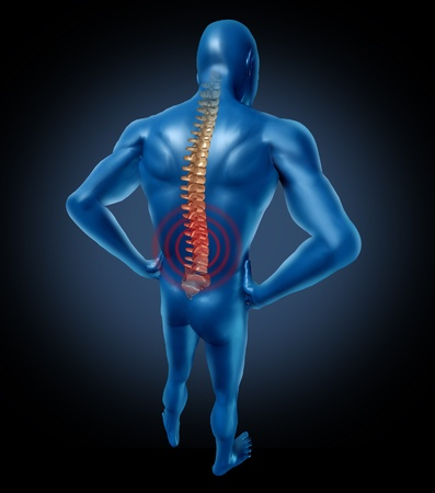 pain killers: human back pain spine posture spine spine