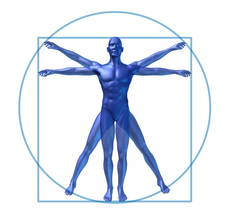 x ray skeleton: human diagram vitruvian classic man Stock Photo