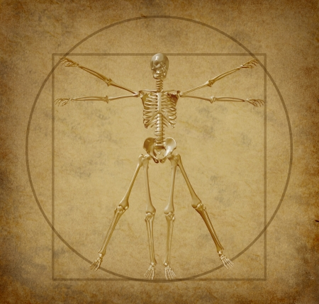 vitruvian: vitruvian human skeleton diagram grunge medical parchment