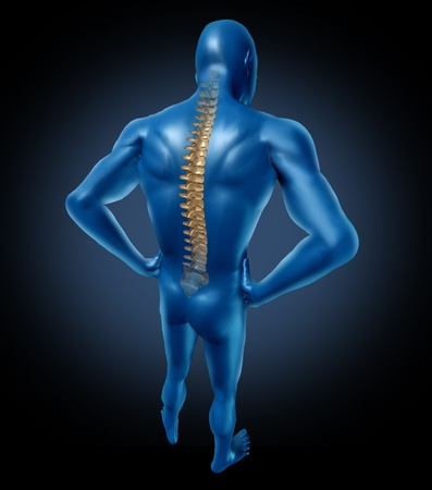 human back pain spine posture spine spine Stock Photo - 11718472