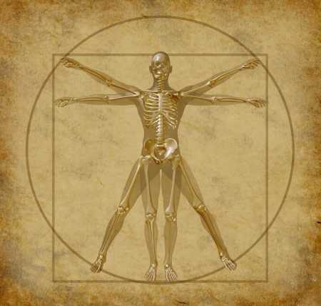 vitruvian-human-diagram-grunge-medical  photo