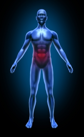 Human body intestinal gastro colon cancer ulcer food poisoning medical x-ray pose joints muscles blue