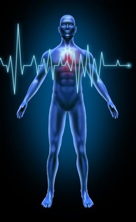 Het menselijk lichaam hartslag controle rate beroerte hartaanval medische x-ray vormen gewrichten spieren blauw