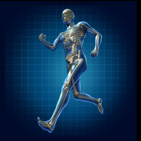 skeleton: Human running man skeleton x-ray visual bone health fitness exercise chart symbol Stock Photo