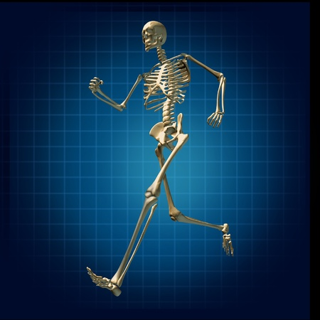 skeleton x ray: Skeleton running medical health care fitness bones symbol chart diagram