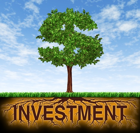 Investment and financial growth symbol with a tree in the shape of a dollar sign and the roots in the shape of the word investment showing profits and long term wealth building for business success and strategic planning for savings and investing.