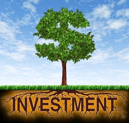 Investeringen en financiële groei symbool met een boom in de vorm van een dollarteken en de wortels in de vorm van het woord investering met winst en lange termijn rijkdom gebouw voor zakelijk succes en strategische planning voor sparen en beleggen. Stockfoto - 11382067