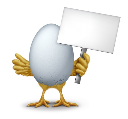 early morning: Funny egg holding a blank sign with humorous hatching baby bird chick breaking through the thin shell showing new life as a symbol of early bird and morning announcement. Stock Photo