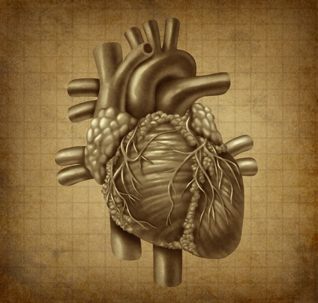 diagnosis: Human heart in old vintage grunge parchement texture as a medical symbol of the blood pumping cardiac inner organ as a health and medicine concept for cardiovasular treatment of diagnosis of clinical symptoms.