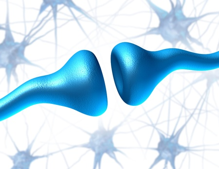 brain function: Neurons and synapse sending biological electrical signals and chemical signaling to human receptor cells as a neurotransmission for the brain and nervous system in the function of anatomy of the body. Stock Photo