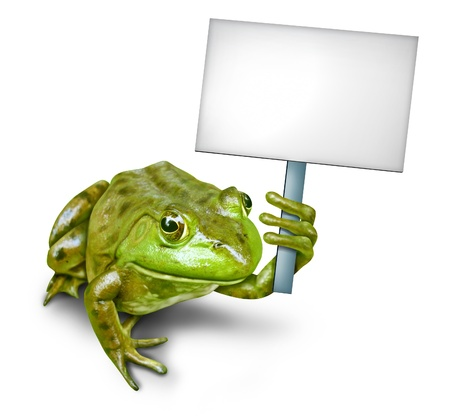 Frog holding a blank sign by a fun green happy smiling humorous amphibian holding a white placard for an advertising promotion presenting an important announcement. photo
