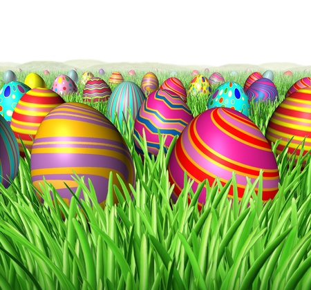 egg hunt: Egg hunt and hunting for Easter eggs in a feild of green grass after an Easter bunny was hiding the decorated ovall spheres for children to find and search as a rewarding fun game of treasure hunting on a white background. Stock Photo