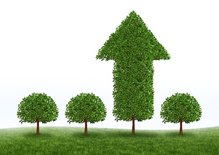Financial growth and business success with the best investment choices from professional financial advice for picking the right equity stocks to invest in for retirement as green trees but one money tree in the shape of an arrow succeeds in high growth on Stock Photo - 12082748