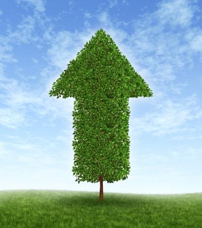 生産性: 成長への投資と緑の木の線形生産性開発への投資から複利のため経済のよい時間帯に青い空に上向き矢印の形での金融ビジネスの成功。