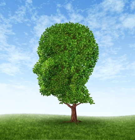 Persoonlijke groei en persoonlijkheid developement als een medische symbool van de psychologie met een boom in de vorm van een menselijk hoofd en de hersenen met intelligentie en sociale denken als gezondheidszorg en geneeskunde icoon voor mentale gedrag. Stockfoto