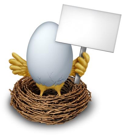 gniazdo jaj: Jajko w gnieździe trzyma białą pusty znak z humorystycznymi skrzydłach ptaków dla dzieci i nóg krakowania białą powłokę pokazujący wczesną anouncement ptak z edycji wiadomości komunikacji z gałązki gniazda.