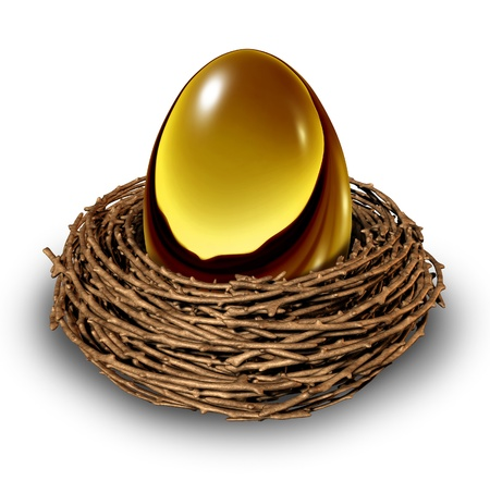 nest egg: Nest Egg in a bird nest as a gold retirement savings fund investment showing the financial business concept of finance management for slow conservative blue chip wealth building and secure future money strategy.
