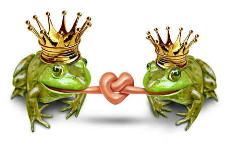 Love Couple and wedding and romantic couple featuring fun princess bride and prince groom frogs with their tongues tied in a knot to form a heart  with gold crowns as a civil union and partnership and commitment to be together in life.