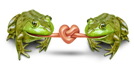 Wedding and romantic couple featuring fun bride and groom frogs with their tongues tied in a knot to form a heart as a civil union and partnership of love and commitment to be together in life. Stock Photo - 12354010