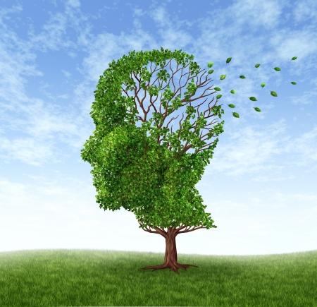 arbol de problemas: Memoria debido a la p�rdida de la demencia y el Alzheimer