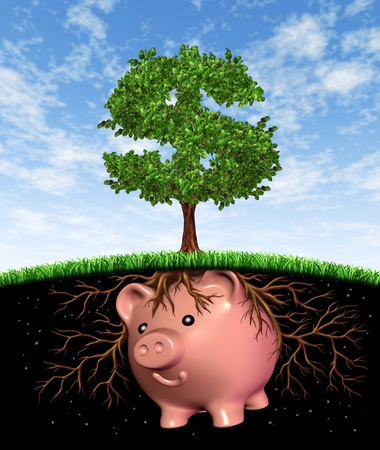 Seed money funding investment and financial growth symbol with a tree in the shape of a dollar sign growqing from a seed that is in the form of a piggy bank with roots showing profits and long term wealth growing from savings for business success and stra