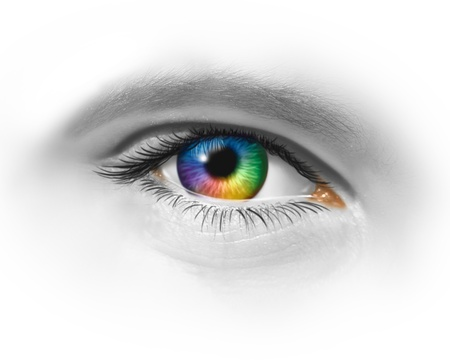 contact: Creative eye as a multicolored macro of a human eyeball showing creativity and artistic fashion expression through visionary design perspective on a white background.