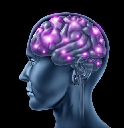 cerebro humano: La inteligencia del cerebro humano con un s�mbolo anat�mico m�dico de una cabeza con neuronsfiring y radiante que muestra la funci�n neurol�gica relacionada con la memoria y la salud mental y la medicina.