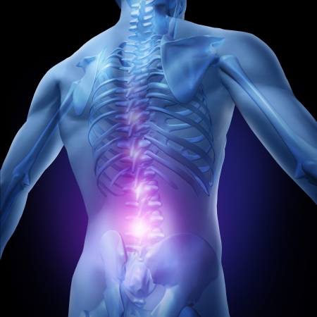 lower back pain: Lower back pain and human backache with an upper torso body skeleton showing the spine and vertebral column in glowing highlight as a medical health care concept for spinal surgery and therapy.